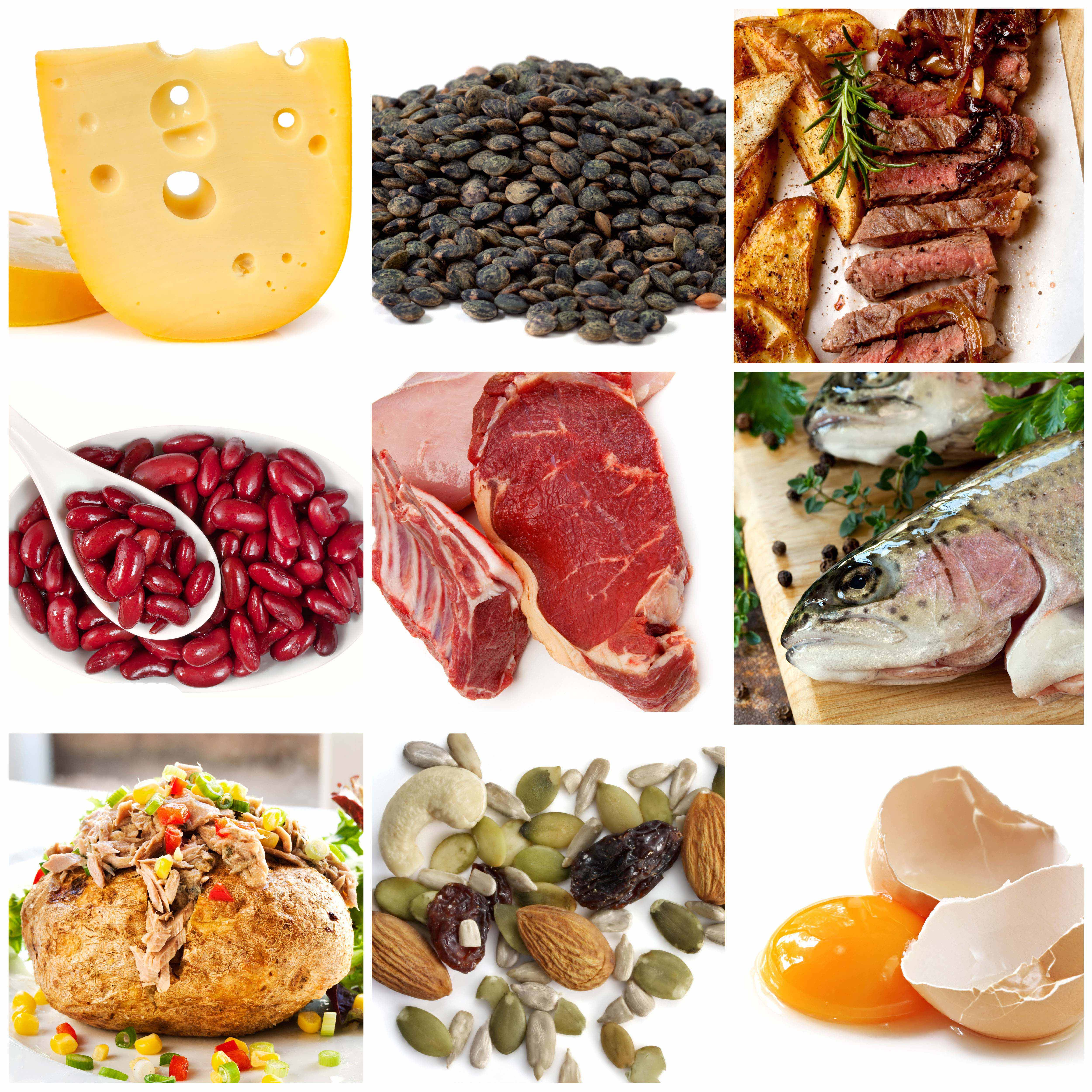 #6 How to Count Macronutrients