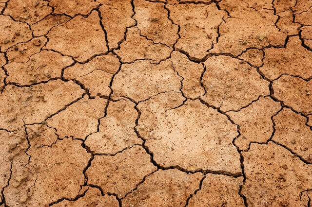 signs that you are dehydrated