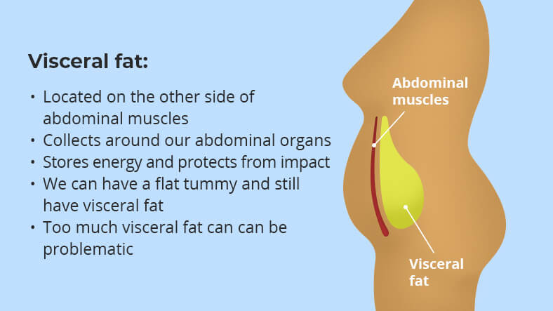 what is visceral fat