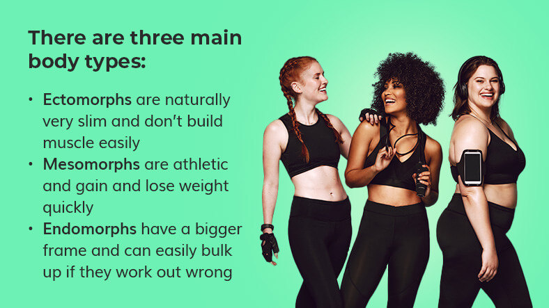 three main body types